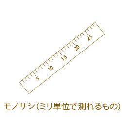 モノサシ(ミリ単位で測れるもの)