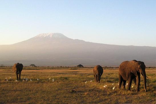 タンザニアの大地